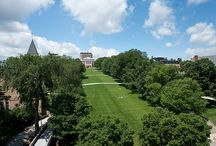 Best College Lawns and Landscaping / We're here to chronicle and rank the best college lawns and landscaping in America.