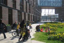 Courtyard / het courtyard gevoel voor zowel buiten als binnen