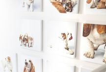Dog Art on the wall