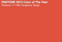 Orange the new black!!