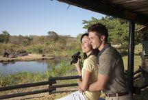 Sabi River Sun Resort / Rent a holiday at the Beautiful Sabi River Sun Resort in Mpumalanga, South Africa.
