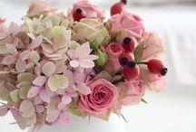 Blumen / Bunt