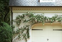 Decorating an exterior brick wall with plants