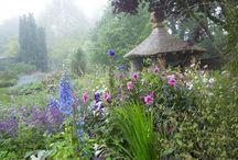 Jardin Highgrove
