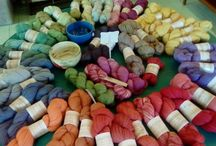 The House of Wool
