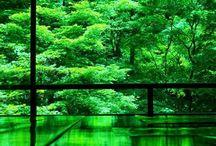 natural green ONSEN
