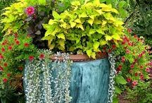 Gardens and porches / Lovely places to sit or play