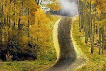 estrada caminhos e trilhas / by marcio mattos