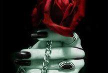 Dark Roses / Rose
