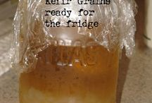 All Things Fermented! / Kombucha and kefir how to.  / by Phoebe Powell