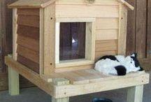 Cat House/Shelter