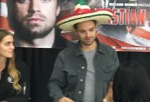 Bucky/Sebastian Stan