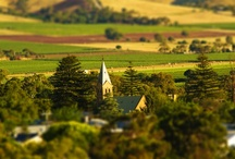 Barossa Grounds / So what are the potential sub-regions of the Barossa? They include, but are not limited to: Ebenezer, Moppa, Kalimna, Greenock, Seppeltsfield, Gomersal, Vine Vale, Bethany, Rowland Flat, Light Pass, Barossa Ranges & Eden Valley.  Read more: http://www.barossa.com/wine/wine-chapters/the-barossa-barossa-grounds/the-barossa-barossa-grounds