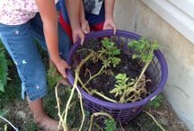 Gardening fun / New ways of growing your own food