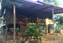 Home stay / Spend a night in a rural village in Kratie province !