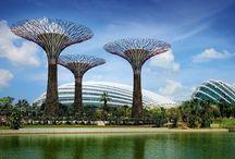 Singapore / Going soon