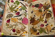 9. leaves-flowers