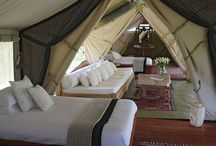 Glamping / Camping in style