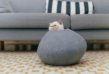 GATS cats