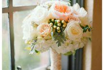 alina, wedding
