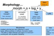 Linguistics {Morphology} / by Alicia Copeland