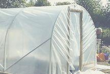 hoophouses