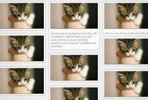 css & css tutorials / http://bradfrost.github.io/this-is-responsive/index.html http://bradfrostweb.com/blog/ / by tapiokat