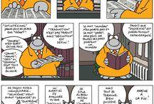 Citations du chat