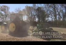 From Riceland Farms / Want to know more about how rice is grown? Follow #FromRicelandFarms as we share photos, blog posts and videos of farmers going through the process of growing rice.