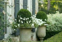 Stunning Gardens