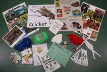Kindergarten Science Kits