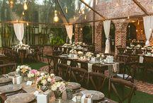 dimitra wedding