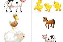 Zvieratá a mláďatá