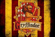 Melhor Casa De Hogwarts ♥️