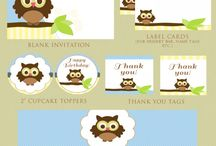 {party} Baby Boy Owl Shower