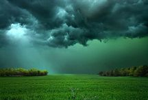 FORCE OF NATURE / by Raul Dado