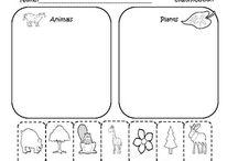 B-4: Animal and Plant Kingdoms