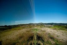 > Architecture - Landscape
