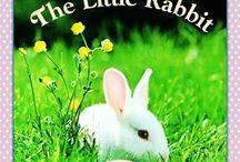 Literature- FIAR- The Little Rabbit