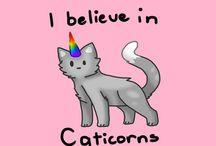 Catcorns