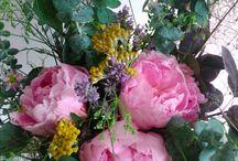 .flowers / flowers. nature. beauty.