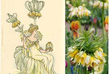 kwiaty W. Szekspira/ W.Shakespeare
