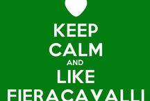 I <3 Fieracavalli / #cavalli #horses Why I love Fieracavalli