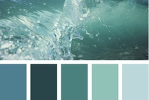 Colors for my house