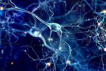 Med/Neuro