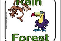 Esőerdők állatai