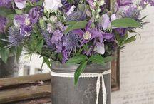 Bloem kleur paars lila wit