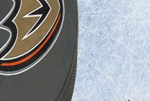 nhl Hockey Embroidered Puck