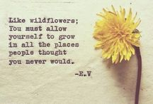 I am a wildflower