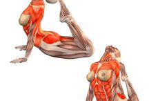 Streching, joga